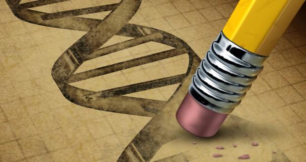 genetik-muhendisligi