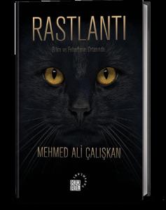 Rastlantı Mehmed Ali Çalışkan Küre Yayınları